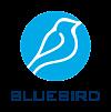 DevOps állás - Bluebird