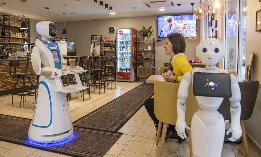 Humanoid robotok - Bluebird blog