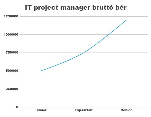 Projekt menedzser fizetés - Bluebird blog