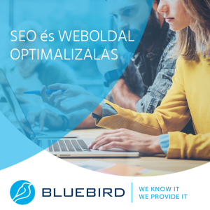 Szoftverfejlesztés - SEO és weboldal optimalizálás - Bluebird