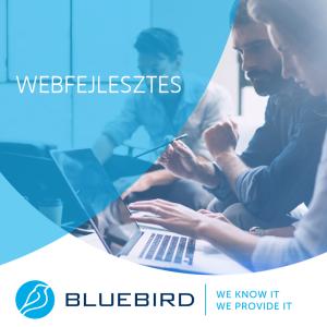Szoftverfejlesztés - webfejlesztés - Bluebird