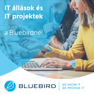 IT állások és IT projektek a Bluebirdnél