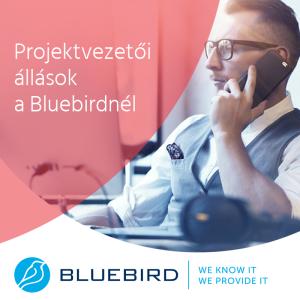 Projektvezető állás - Bluebird