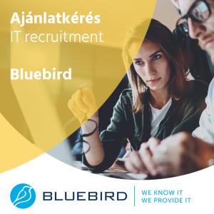 Projektvezető - IT recruitment - Bluebird