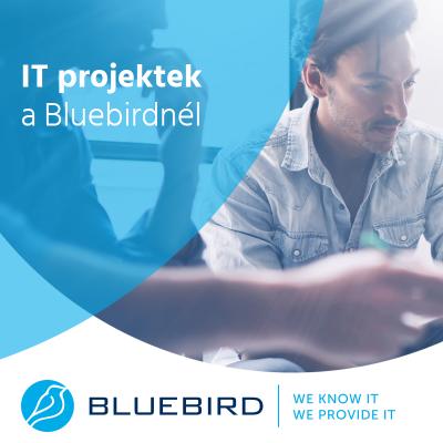 IT projektek - Bluebird