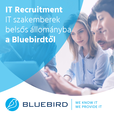 IT munkaerő-közvetítés - Bluebird