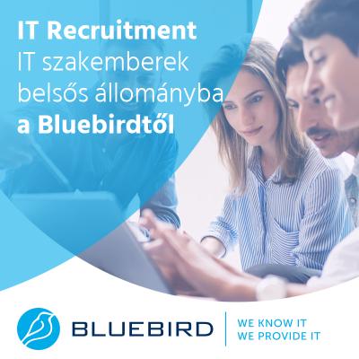 IT recruitment - Bluebird