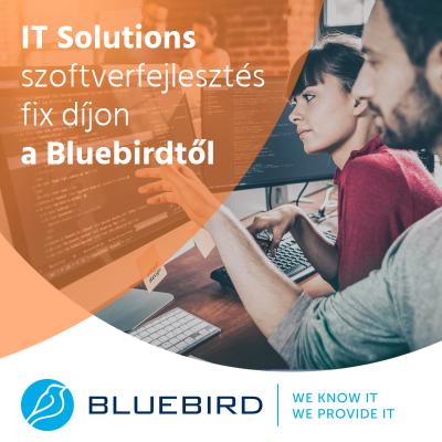 IT solutions - Bluebird