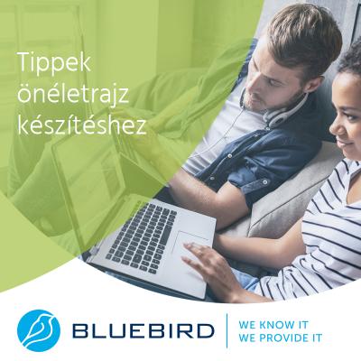 Önéletrajz készítés tippek - Bluebird