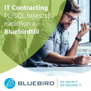 PL/SQL fejlesztő a Bluebirdtől - IT Contracting
