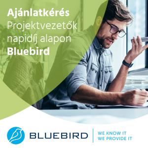Projektvezető napidíjon a Bluebirdtől