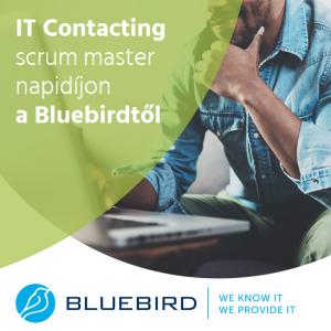 Scrum master napidíjon a Bluebirdtől