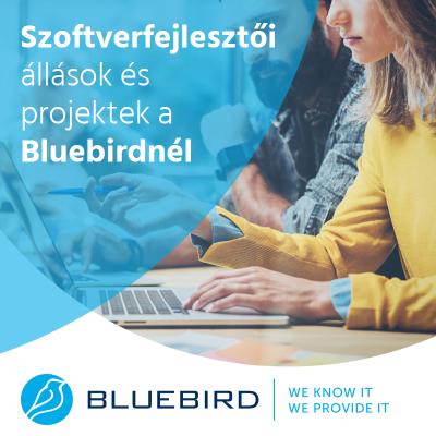Szoftverfejlesztő állások - Bluebird