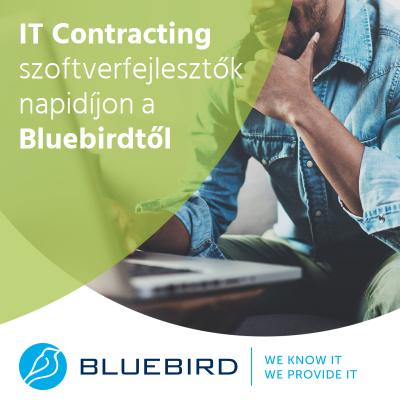 Szoftverfejlesztők napidíjon - Bluebird