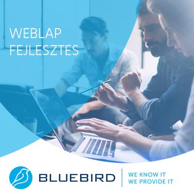 Weblap fejlesztés - Bluebird