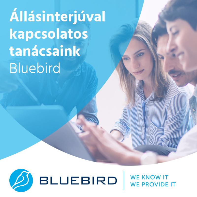 Állásinterjúval kapcsolatos tanácsok - Bluebird