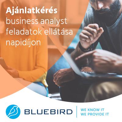 Business analyst - ajánlatkérés ITC - Bluebird