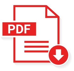 CV minta letöltés - pdf - Bluebird