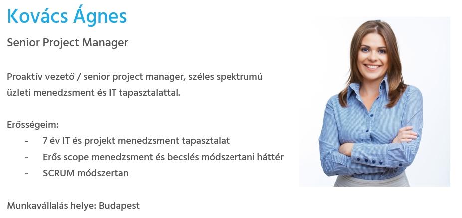 Önéletrajz minta - projektvezető - Bluebird