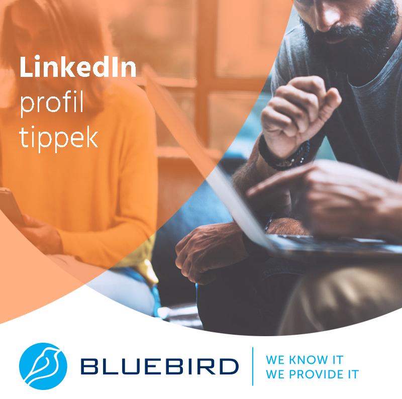 LinkedIn profil tippek - Bluebird